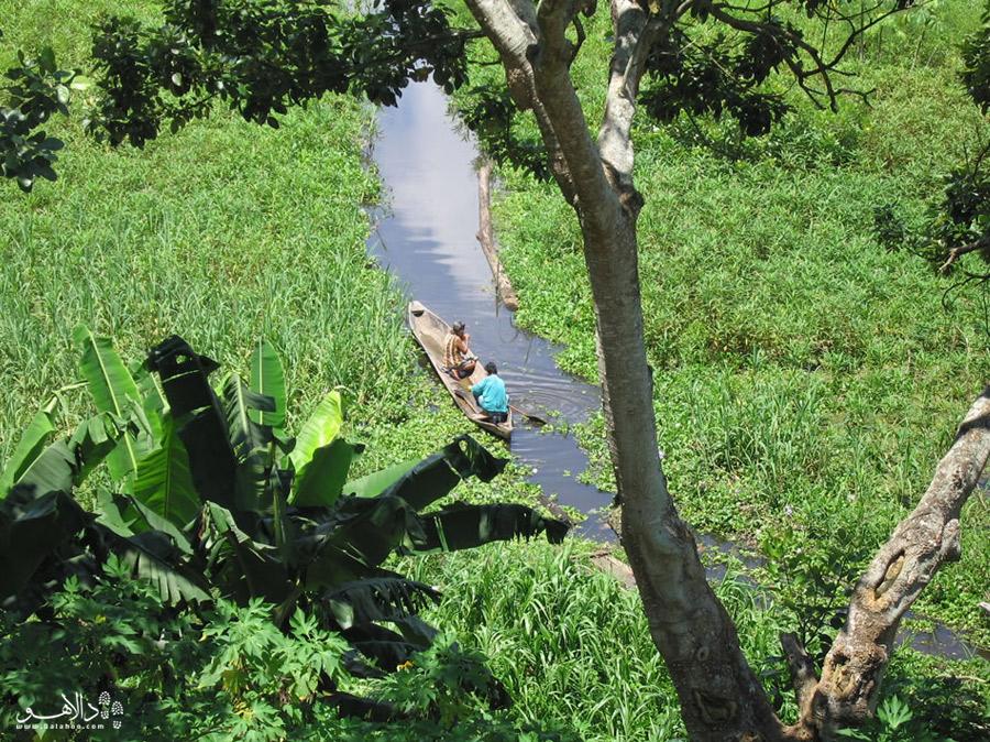 رودخانهی آمازون