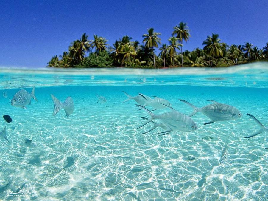 سواحل زیبای جاوا