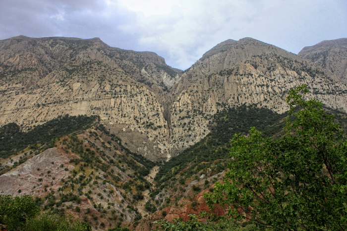 کوه سالن