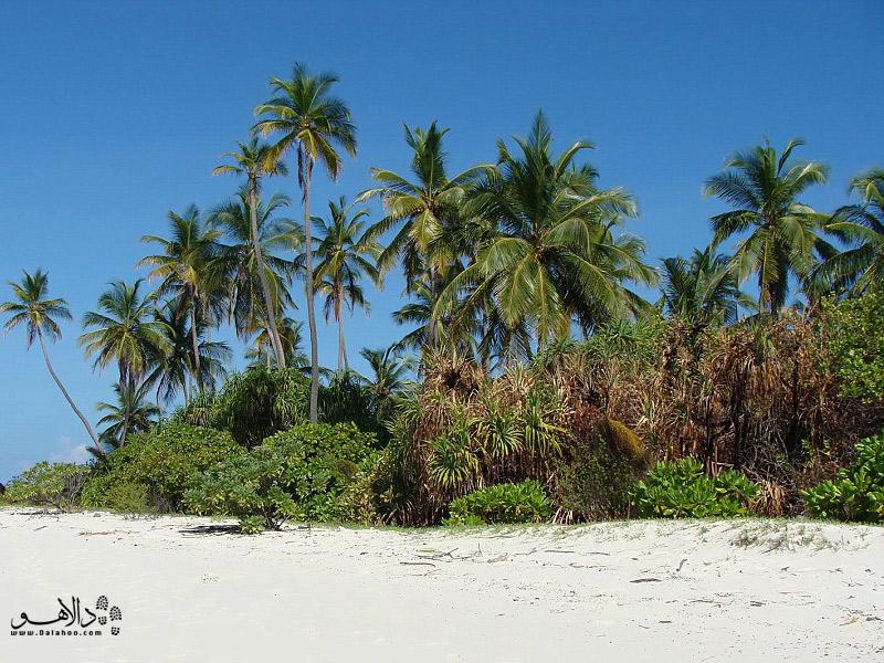 جزایر بکر مالدیو