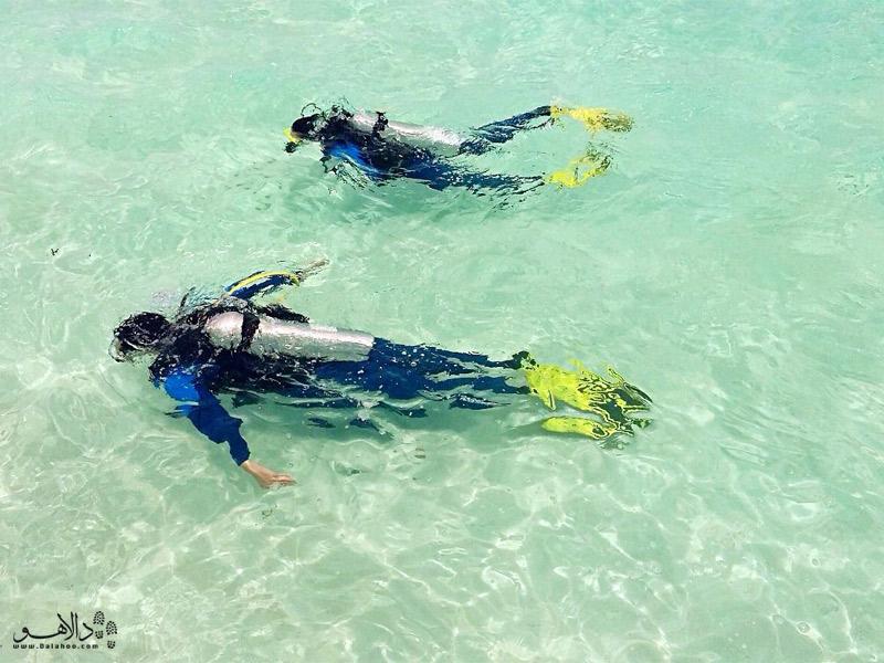 غواصی در آبهای زلال اقیانوس هند، مالدیو